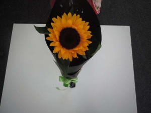 shopflowers0016